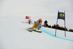 OSSV TELE TOP-Cup 2019 - 7793