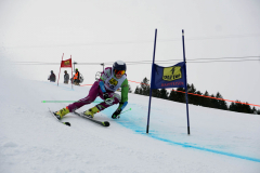 OSSV TELE TOP-Cup 2019 - 7876