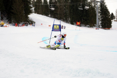OSSV TELE TOP-Cup 2019 - 8115