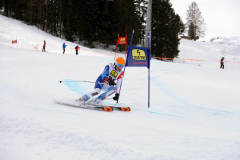 OSSV TELE TOP-Cup 2019 - 8146