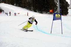 OSSV TELE TOP-Cup 2019 - 8147