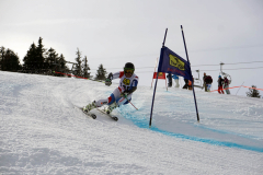 OSSV TELE TOP-Cup 2019 - 8182