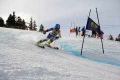 OSSV TELE TOP-Cup 2019 - 8196