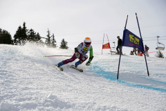 OSSV TELE TOP-Cup 2019 - 8219