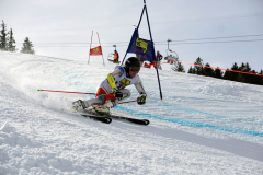 OSSV TELE TOP-Cup 2019 - 8230