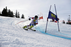 OSSV TELE TOP-Cup 2019 - 8233