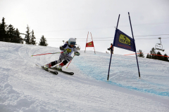OSSV TELE TOP-Cup 2019 - 8272