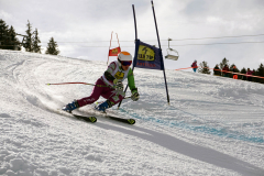 OSSV TELE TOP-Cup 2019 - 8390