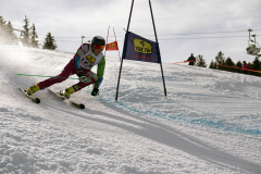 OSSV TELE TOP-Cup 2019 - 8392